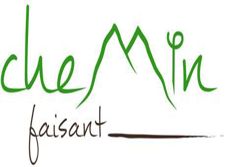 Logo Dialogue Festival Chemin Faisant (France)
